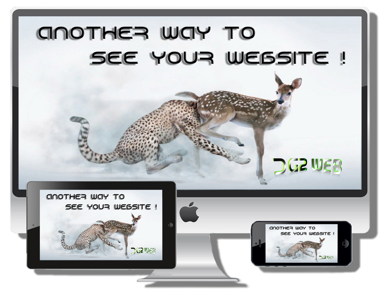 DG2web Another way to see your Website !